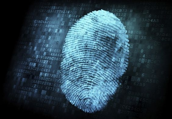 multibiometric