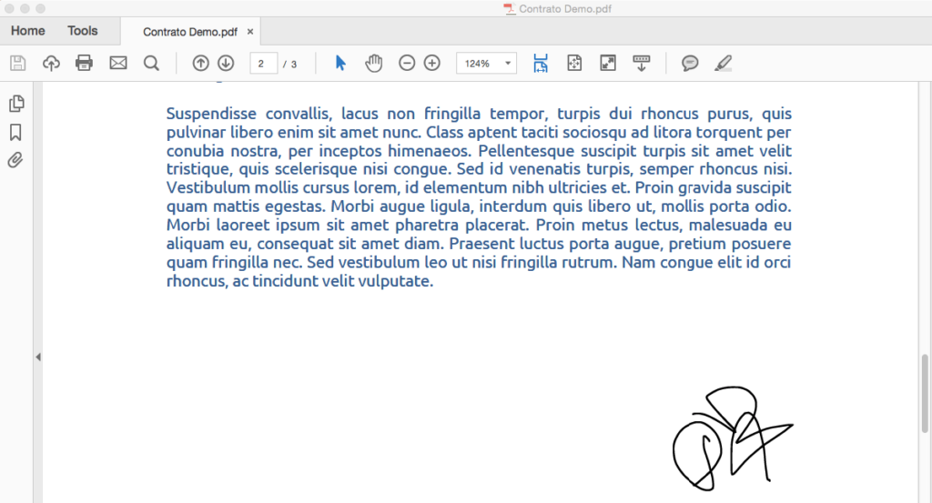 Electronic signature on the PDF document