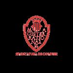 Logo sindicatura de comptes